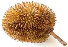 Καρπός Durian στοκ εικόνες