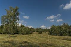 Καρστ της Σλοβακίας στη θερινή καυτή ημέρα Στοκ Εικόνα
