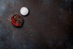 Καρυκεύματα άλας πιπεριών Στοκ φωτογραφία με δικαίωμα ελεύθερης χρήσης