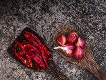 Καρυκεύματα για τα ταϊλανδικά τρόφιμα Στοκ Εικόνα