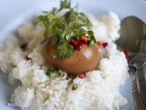 Καρυκεύματα κάρρυ ρυζιού και αυγών Στοκ εικόνες με δικαίωμα ελεύθερης χρήσης