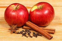 καρυκεύματα μήλων Στοκ φωτογραφία με δικαίωμα ελεύθερης χρήσης