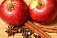 καρυκεύματα μήλων Στοκ Εικόνες