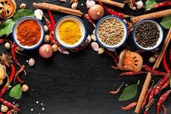 Καρυκεύματα με τα συστατικά στο σκοτεινό υπόβαθρο υγιής ή μαγείρεμα γ Στοκ Εικόνες