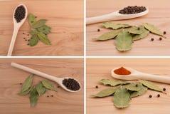 καρυκεύματα σπόρων συστατικών τροφίμων Στοκ φωτογραφία με δικαίωμα ελεύθερης χρήσης