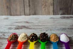 Καρυκεύματα στα κουτάλια Μαύρο πιπέρι, καρδάμωμο, κορίανδρο, σπόροι μουστάρδας, φύλλο κόλπων και άλλα καρυκεύματα Στοκ φωτογραφία με δικαίωμα ελεύθερης χρήσης