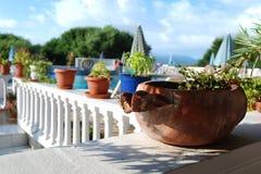 καρυκεύματα χορταριών της Ελλάδας αρχιτεκτονικής Στοκ Εικόνα
