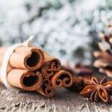Καρυκεύματα Χριστουγέννων Στοκ φωτογραφία με δικαίωμα ελεύθερης χρήσης