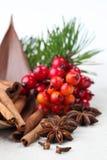 καρυκεύματα Χριστουγέν&nu Στοκ Φωτογραφία