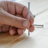 Καρφί σιδήρου εκμετάλλευσης Capenter υπό εξέταση στην ξύλινη σανίδα Στοκ Εικόνες