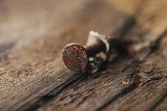 καρφί σκουριασμένο Στοκ φωτογραφία με δικαίωμα ελεύθερης χρήσης