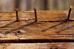 καρφί τρία Στοκ φωτογραφίες με δικαίωμα ελεύθερης χρήσης