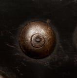 καρφί Στοκ φωτογραφία με δικαίωμα ελεύθερης χρήσης