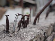Καρφιά στο ξύλο Στοκ φωτογραφία με δικαίωμα ελεύθερης χρήσης
