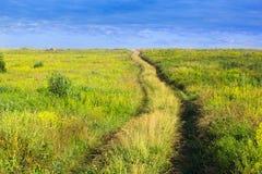 Καρφωμένο με τη διχάλα μονοπάτι σε μια χλοώδη κοιλάδα και έναν μπλε cloudly ουρανό Στοκ Φωτογραφίες