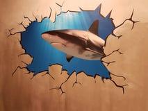 Καρχαρίας μέσω ενός τοίχου Στοκ Εικόνα