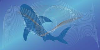Καρχαρίας στο όμορφο υπόβαθρο κάτω από το νερό ελεύθερη απεικόνιση δικαιώματος