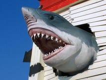 Καρχαρίας Ripley's στοκ εικόνα με δικαίωμα ελεύθερης χρήσης