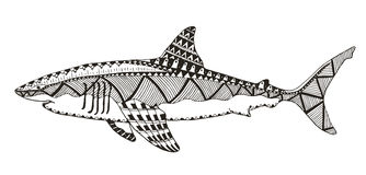 Καρχαρίας zentangle τυποποιημένος, διανυσματικός, απεικόνιση, σχέδιο, freehan Στοκ εικόνα με δικαίωμα ελεύθερης χρήσης