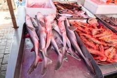 καρχαρίες και γαρίδες στην αγορά ψαριών στοκ εικόνα με δικαίωμα ελεύθερης χρήσης