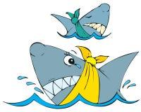 Καρχαρίες Στοκ φωτογραφίες με δικαίωμα ελεύθερης χρήσης