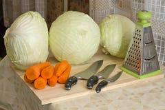 Καρότα και λάχανο Στοκ Φωτογραφία