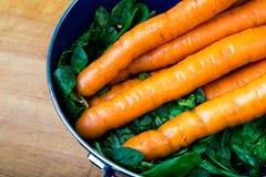 Καρότα και πράσινα από το Graden Στοκ φωτογραφίες με δικαίωμα ελεύθερης χρήσης