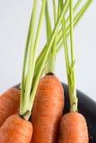 Καρότα και στενός επάνω μελιτζάνας στοκ φωτογραφίες