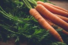 Καρότα με πράσινο Στοκ εικόνα με δικαίωμα ελεύθερης χρήσης