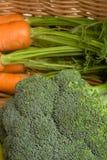 καρότα μπρόκολου Στοκ φωτογραφία με δικαίωμα ελεύθερης χρήσης