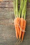 καρότα που απομονώνονται Στοκ φωτογραφία με δικαίωμα ελεύθερης χρήσης