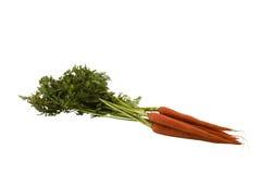 καρότα που ψαλιδίζουν τ&omicr Στοκ Εικόνες