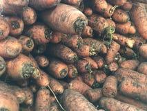 Καρότα σε μεγάλες ποσότητες στο αφηρημένο υπόβαθρο καταστημάτων στοκ εικόνες