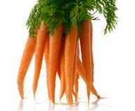 καρότα φρέσκα Στοκ φωτογραφία με δικαίωμα ελεύθερης χρήσης