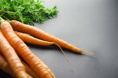 καρότα φρέσκα Στοκ Φωτογραφίες