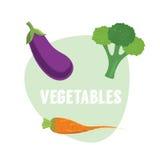 Καρότα φρέσκων λαχανικών, μπρόκολο, μελιτζάνα επίσης corel σύρετε το διάνυσμα απεικόνισης Στοκ Φωτογραφίες