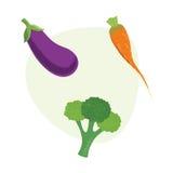 Καρότα φρέσκων λαχανικών, μπρόκολο, μελιτζάνα επίσης corel σύρετε το διάνυσμα απεικόνισης Στοκ Εικόνες