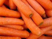 καρότα Στοκ Εικόνα