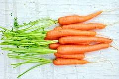 Καρότα στοκ εικόνα με δικαίωμα ελεύθερης χρήσης
