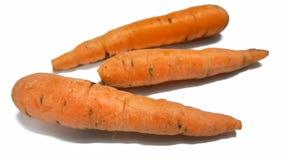 Καρότο μωρών Στοκ Εικόνα