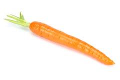 Καρότο που απομονώνεται άσπρο στενό σε επάνω υποβάθρου στοκ φωτογραφία