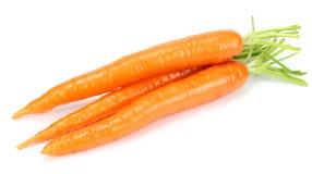 Καρότο που απομονώνεται άσπρο στενό σε επάνω υποβάθρου στοκ φωτογραφία με δικαίωμα ελεύθερης χρήσης
