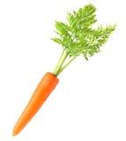 Καρότο που απομονώνεται Στοκ Φωτογραφίες