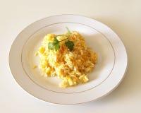 Καρότο ρυζιού Στοκ εικόνες με δικαίωμα ελεύθερης χρήσης