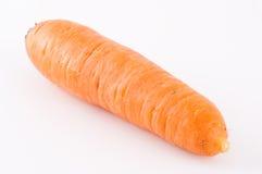 καρότο φρέσκο Στοκ Φωτογραφίες