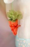 Καρότο δώρων Στοκ φωτογραφία με δικαίωμα ελεύθερης χρήσης