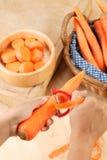 καρότο Στοκ φωτογραφία με δικαίωμα ελεύθερης χρήσης