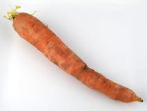 καρότο στοκ εικόνες με δικαίωμα ελεύθερης χρήσης