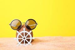 Καρύδα με τα γυαλιά ηλίου Στοκ εικόνα με δικαίωμα ελεύθερης χρήσης