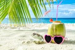 Καρύδα, ρόδινα γυαλιά ηλίου και θαλασσινό κοχύλι στην κινηματογράφηση σε πρώτο πλάνο άμμου Στοκ Εικόνες